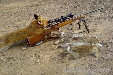 Varmint Hunting Humor