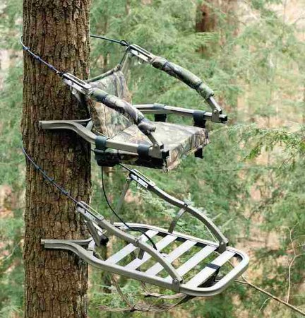 Tips for Tree Stand Safety