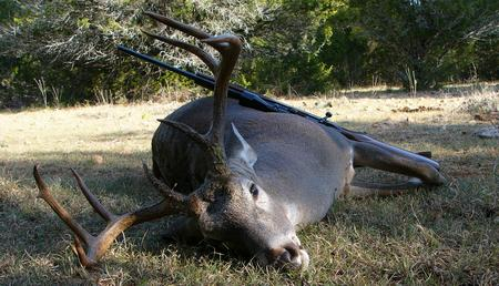 Texas adopts new deer hunting regulations for Texas hunting and fishing license