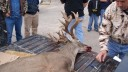 Big Non-typical Whitetail Buck from Brown County